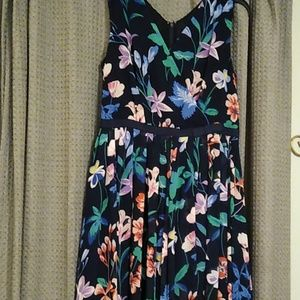 Talbot's floral dress. Fit and flare.  NWOT